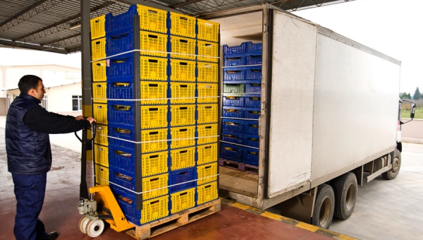 Perishable Goods Transportations